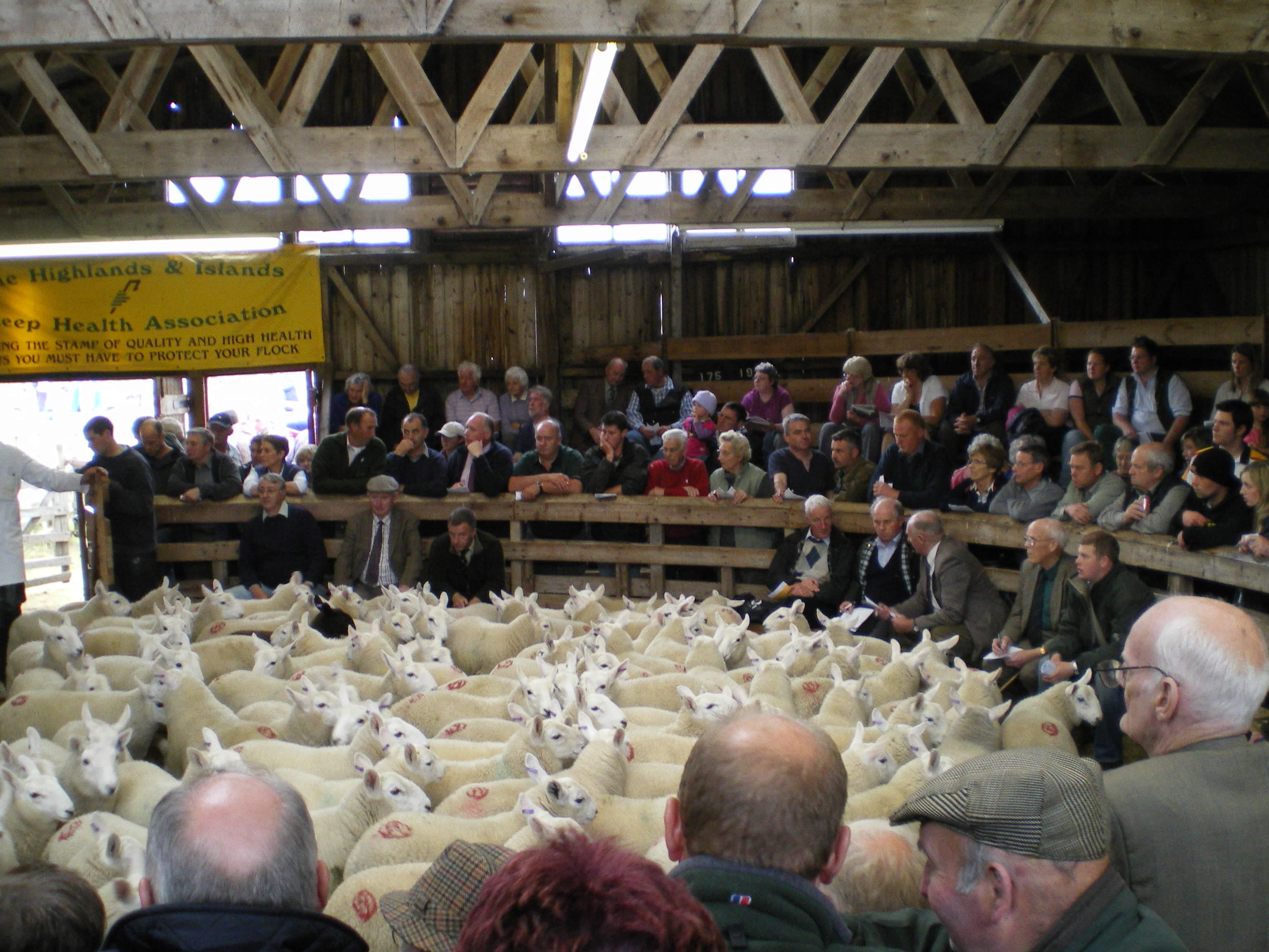 Time to be proactive in winning markets, livestock representatives urge Government