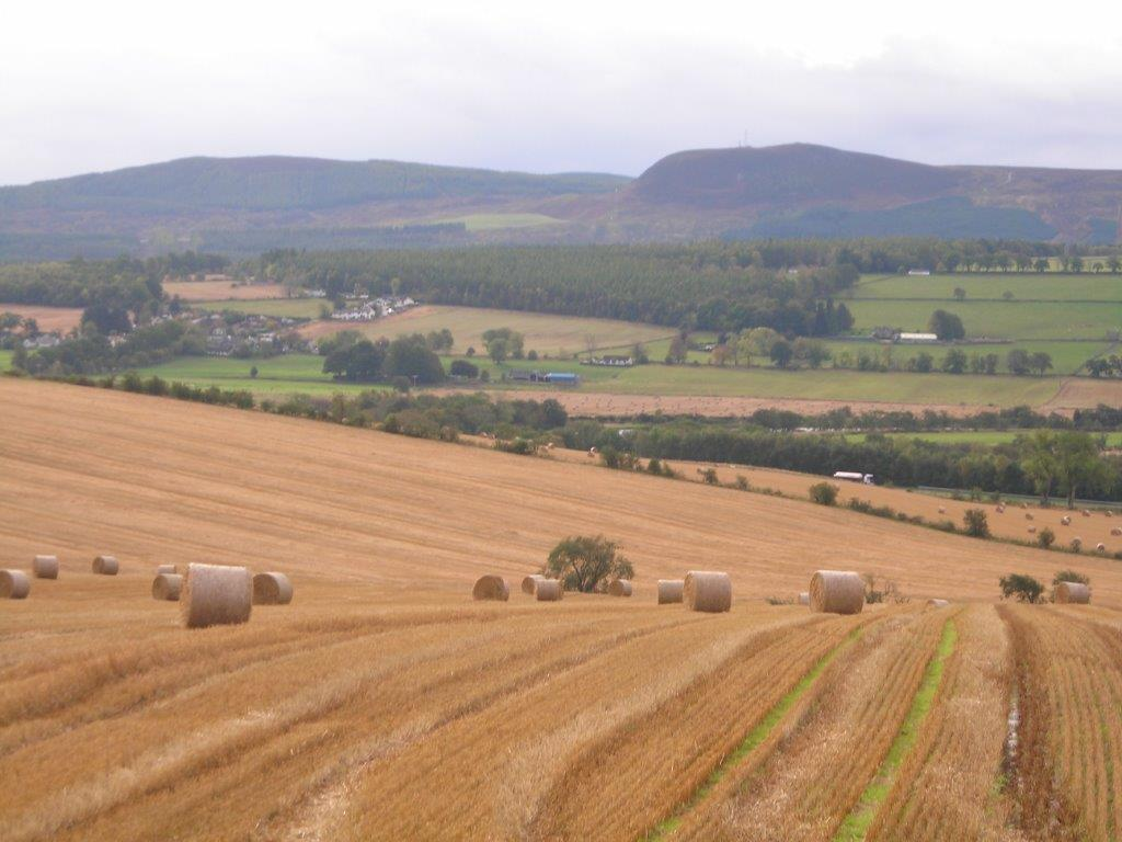 GOVERNMENT URGED TO EXEMPT AGRICULTURAL TENANCIES FROM PUNITIVE LAND TAX