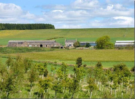 GOVERNMENT SURVEY ON FARM TENANTS' HOUSING UNDERWAY